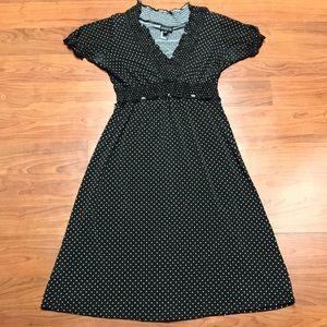 Enfocus Studio Polka Dot A Line Dress, Size 6